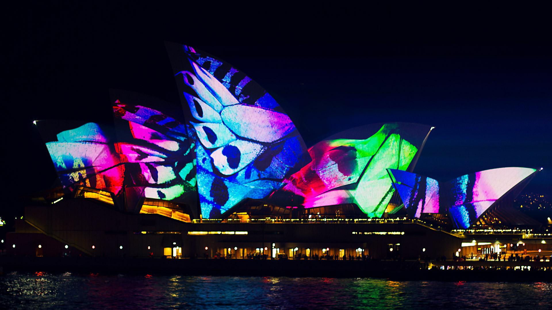 Sydney Opera House Butterfly