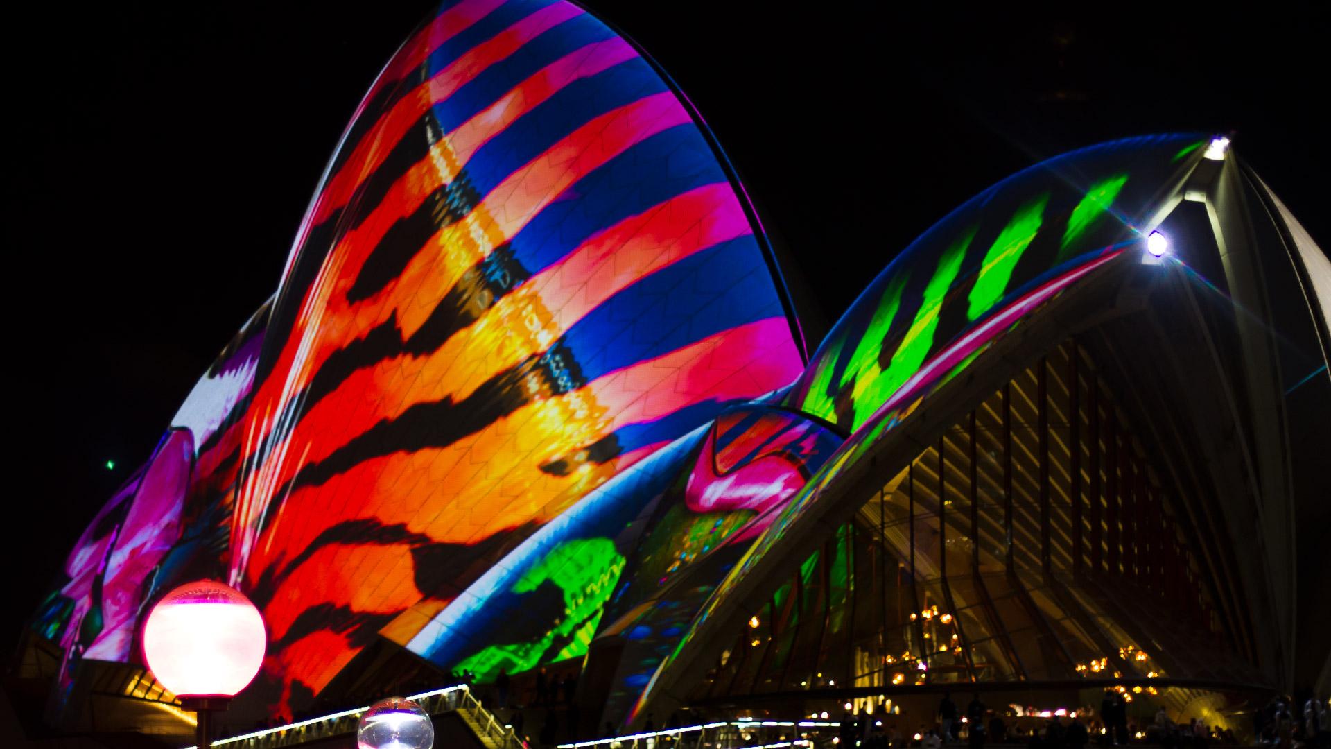 Sydney Opera House Shells Close Up
