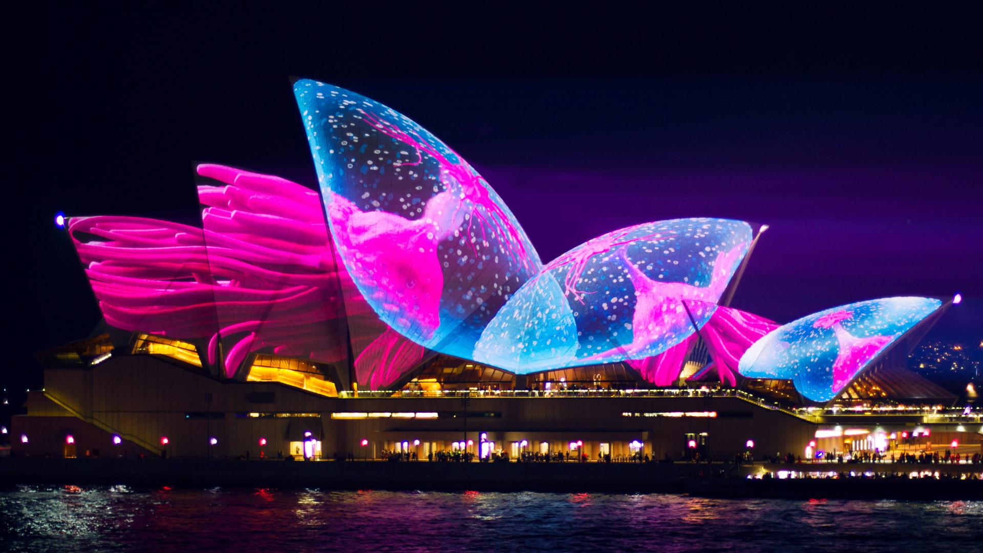 Sydney Opera House Jellyfish